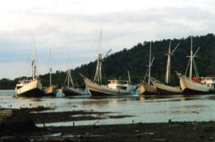 Cargo Phinisi at Batulicin, Kalimantan, Indonesia